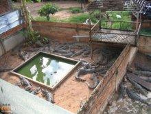 Widok z hotelu w Kambod�y