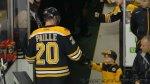 Ma�y fan hokeja na lodzie i ��wiki