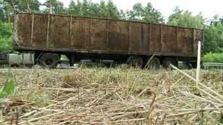 Inspekcja Transportu Drogowego - trumna na drodze