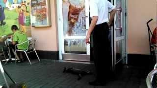 Kot kt�ry ma wszy ...
