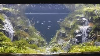 Wodospad w akwarium