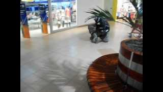 Tour De Carrefour Kalisz