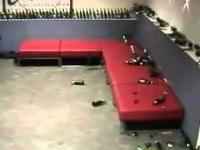 Browarowe domino