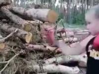 Mała bokserka daje wycisk drewnu