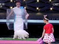 Dziewczynka która potrafi hipnotyzować zwierzęta