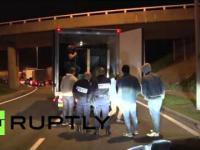 Imigranci w Calais włamują się do ciężarówki w której przewożony jest  ...niedźwiedź