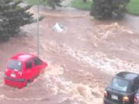 Smutne zdjęcia z powodzi w Australii