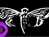 Cicada 3301: Jedna z największych tajemnic Internetu?