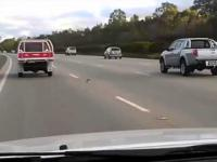 Szalony szybki gołąb na autostradzie.