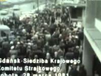 Dlaczego Wałęsa zakazał strajku w 1981 roku ?