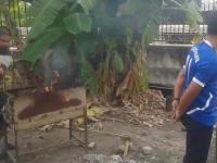 Co Wy wiecie o grillowaniu