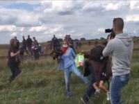 Kamerzystka podstawia nogę imigrantowi z dzieckiem