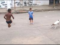 Dzieci grają z psem w skakankę