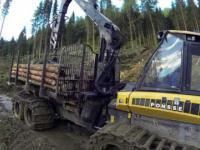 Wycinka lasu od A do Z(ścięcie/zrywka/wywóz) + piękny plener