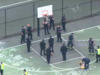 Policjanci próbują ściągnąć naćpanego gościa który wlazł... na kosz