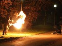 Psychol z miotaczem ognia