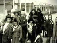 Dokument Auschwitz Podróż Do Piekła
