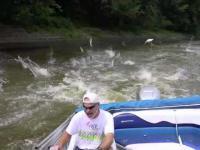 Inwazja ryb