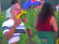 Sunflower Party Guy Bro