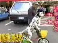 SZOK pies na rowerze!!!!
