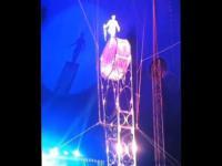 Wypadek w cyrku