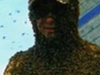 Władca pszczół