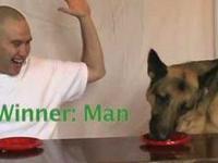 Człowiek kontra pies