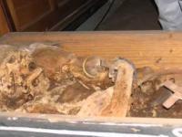 Otwarcie krypty Magdalenek w Szprotawie