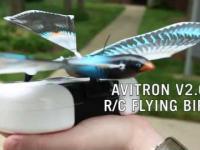 Zdalnie sterowany bioniczny ptak naśladujący naturalne ruchy lotu