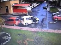Profesionalny wyjazd z parkingu