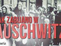 Jak zabić 1 mln ludzi? Oto jak mordowano w Auschwitz. AleHistoria odc. 110