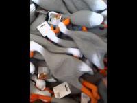 Armia kaczek
