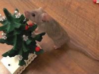 Myszka ubiera choinkę