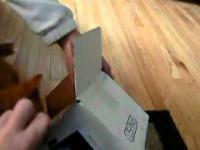 Kot kontra małe pudełko