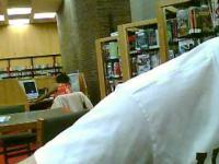 Szalona Kobieta w Bibliotece