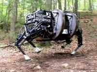 Robot parzystokopytny