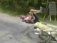 Jak przy pomocy psa złamać koło w rowerze