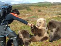 O mój Boże to niedźwiedź! O mój Boże to człowiek!