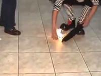Klaun spalił gołębia żywcem w wyniku nieudanej sztuczki