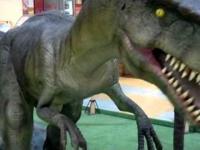 Dinozaury w Hipermarkecie