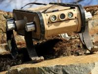 RHex - robot do zadań specjalnych.
