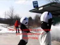 Kieleckie Pandy w akcji