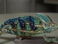 Jak kameleon zmienia kolor