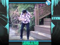 Best Dance Vines Compilation 2015 | The Best Moves From imRainO