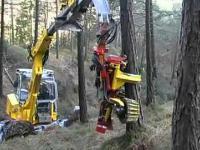 Niesamowita maszyna do szybkiej wycinki drzew
