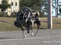 Najszybszy biegajacy robot