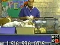 Najgorszy program o zwierzakach