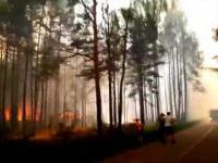 Pożar lasu z bardzo bliska