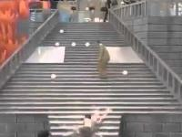 Japoński Teleturniej - Śliskie schody