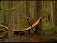 Extremalna jazda w lesie